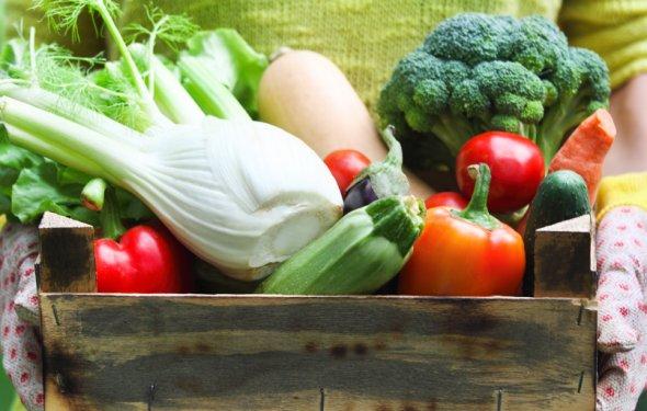 Фитнес диета при помощи